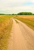 Estrada no campo — Fotografia Stock