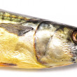 Mackerel — Stock Photo