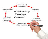 Presentation of marketing strategy — Stockfoto