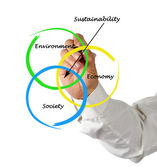 Presentation of diagram of sustainability — Stok fotoğraf