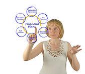 Bir finansal plan diyagramı — Stok fotoğraf