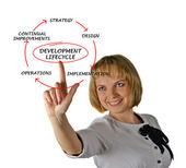 Presentation av utvecklingscykeln — Stockfoto
