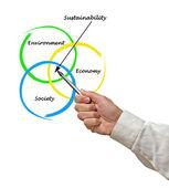 Presentation of diagram of sustainability — Stock Photo