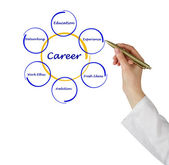 Diagram of career success — 图库照片