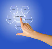 Management diagram — Stock Photo