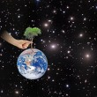 Ree on Earth as a symbol of peace.Elements of this image furnish — Stockfoto