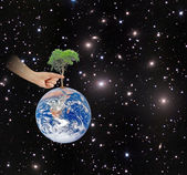 Ree on Earth as a symbol of peace.Elements of this image furnish — Stock Photo