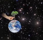 Ree en la tierra como un símbolo de la peace.elements de esta imagen amueblar — Foto de Stock