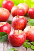 Apples with leaves — Stock Photo