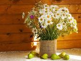 Fleurs de marguerite — Photo