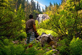 Young man in forest — Stock Photo