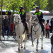 Madrid horse police - Stock Photo