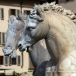 Fountain of Neptune in the Piazza della Signoria, Florence — Stock Photo