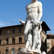 Florence - Statue of Neptune — Stock Photo #11223039