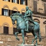Florence, Piazza della Signoria — Stock Photo #11223042