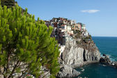 Manarola - one of the cities of Cinque Terre in italy — Foto Stock