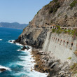 Cinque Terre - road of love.  Liguria — Stock Photo