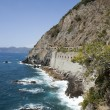 Постер, плакат: Cinque Terre road of love Liguria