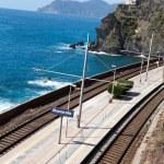 Railway station of Manarola in Cinque Terre — Stock Photo #11644472