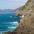 Cliffs in Riomaggiore.  Cinque Terre, Liguria, Italy - Photo