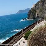 Railway station of Manarola in Cinque Terre — Stock Photo #11753456