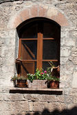 Flowers hangs on the window of a home — ストック写真