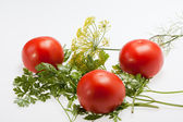 Leaves parsley, tomatoes and dill — Stock Photo