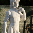 Stock Photo: Copy of Statue of David