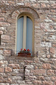 The Flowers on the old Tuscan Window — Stock Photo