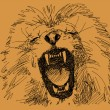 Royalty-Free Stock ベクターイメージ: Hand drawn lion vector