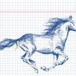 Hand drawn horse Vector — Stock Vector