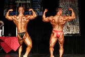 Bodybuilders — Stock Photo
