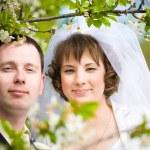 Wedding couple — Stock Photo #11594232