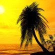 Stock Photo: Single palm on the uninhabited island on a brightly sunset