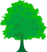Green tree - vector illustration — Stock Vector