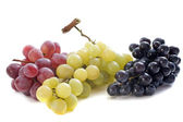 Three varieties of grapes — Stock Photo