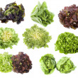 Varieties of salads — Stock Photo #14724095