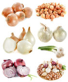 Group of onions — Stock Photo