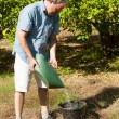 Fertilizing — Stock Photo #11541364