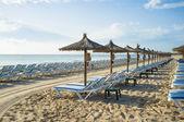 Sunny resort — Stock Photo
