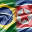 Brazil and North Korea — 图库照片