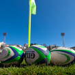 Sport - Rugby — Stock Photo #12414071