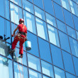 Stock Photo: Windows cleaning service