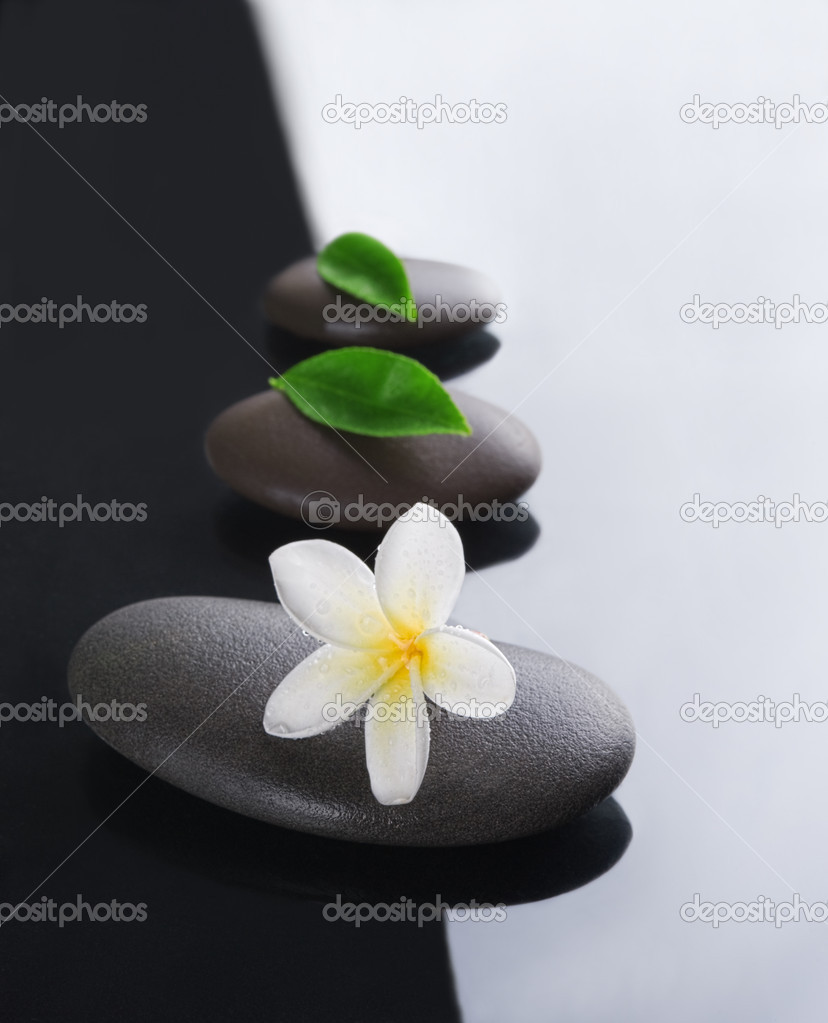 Spa concept zen stones with frangipani flowers — Stock Photo #10813639
