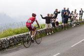 The Cyclist David Moncutie — Stock Photo