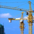 Cranes on construction site - Stock Photo