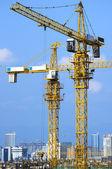 Cranes on construction site — Stock Photo