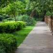 Wooden footpath throught garden — Stock Photo #11167561