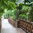 Wooden footbridge throught garden — Stock Photo #11173550