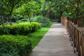 Wooden footpath throught garden — Stock Photo